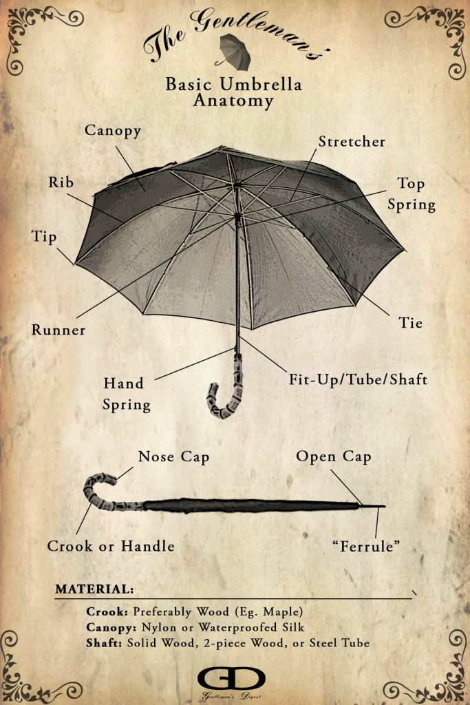 Anatomy of an Umbrella