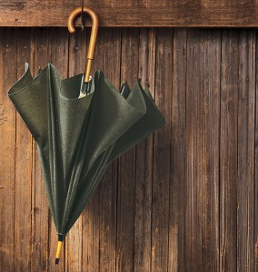 Filson Umbrella